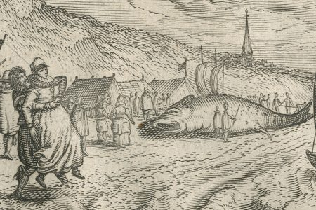 Delicious Holland in 1616