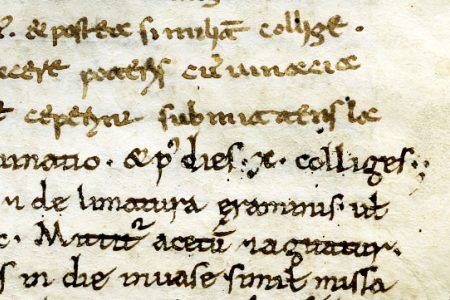 Common but not ordinary: a Late 11th-Century Dioscorides Written in Two Scripts
