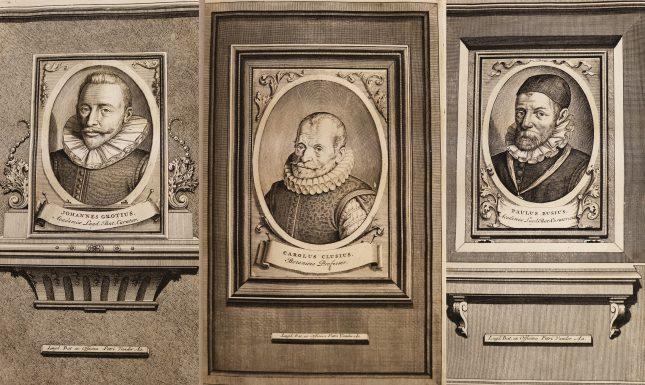 Compilation of portraits